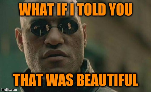 Matrix Morpheus Meme | WHAT IF I TOLD YOU THAT WAS BEAUTIFUL | image tagged in memes,matrix morpheus | made w/ Imgflip meme maker