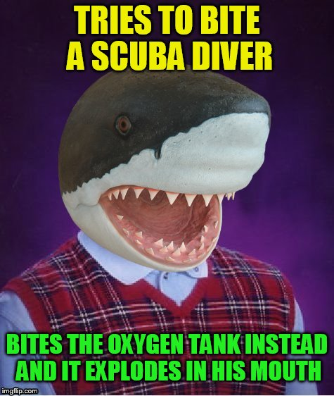 Bad Luck Shark | TRIES TO BITE A SCUBA DIVER BITES THE OXYGEN TANK INSTEAD AND IT EXPLODES IN HIS MOUTH | image tagged in bad luck shark | made w/ Imgflip meme maker