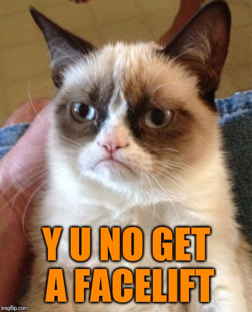 Grumpy Cat Meme | Y U NO GET A FACELIFT | image tagged in memes,grumpy cat | made w/ Imgflip meme maker
