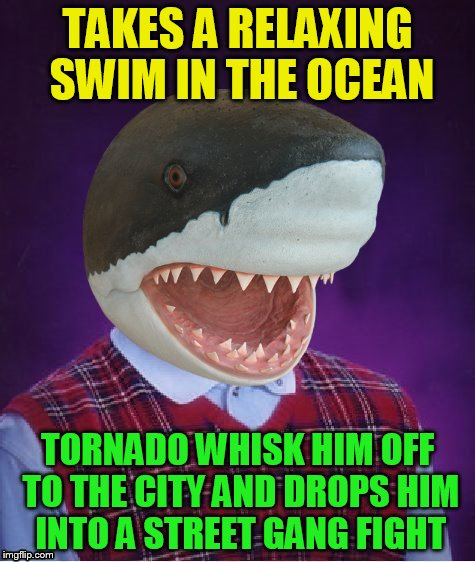Bad Luck Shark | TAKES A RELAXING SWIM IN THE OCEAN TORNADO WHISK HIM OFF TO THE CITY AND DROPS HIM INTO A STREET GANG FIGHT | image tagged in bad luck shark | made w/ Imgflip meme maker