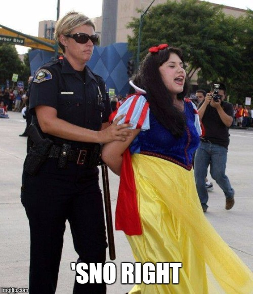 'SNO RIGHT | image tagged in no snow white privilege for you | made w/ Imgflip meme maker