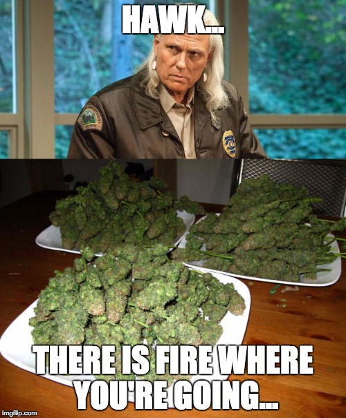 Hawk, there is fire where you're going | HAWK... THERE IS FIRE WHERE YOU'RE GOING... | image tagged in twin peaks | made w/ Imgflip meme maker