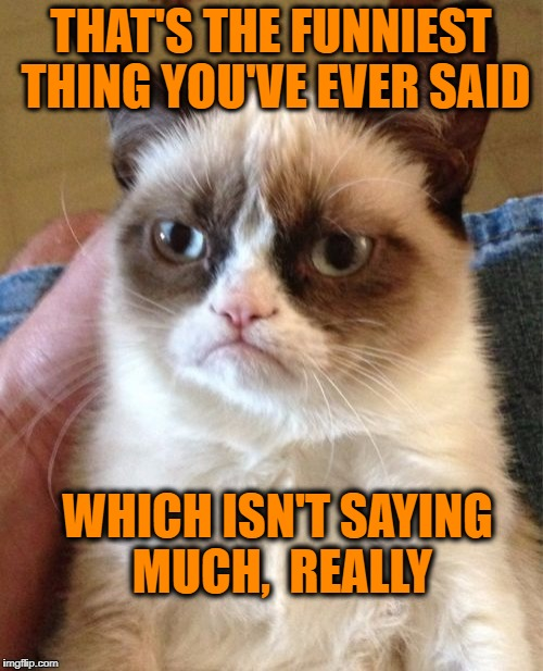 Grumpy Cat Meme | THAT'S THE FUNNIEST THING YOU'VE EVER SAID WHICH ISN'T SAYING MUCH,  REALLY | image tagged in memes,grumpy cat | made w/ Imgflip meme maker