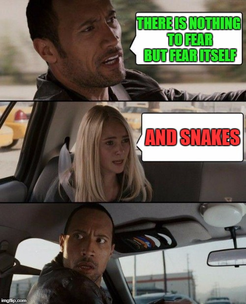 The Rock Driving Meme | THERE IS NOTHING TO FEAR BUT FEAR ITSELF AND SNAKES | image tagged in memes,the rock driving | made w/ Imgflip meme maker