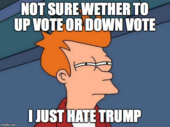 Futurama Fry Meme | NOT SURE WETHER TO UP VOTE OR DOWN VOTE I JUST HATE TRUMP | image tagged in memes,futurama fry | made w/ Imgflip meme maker