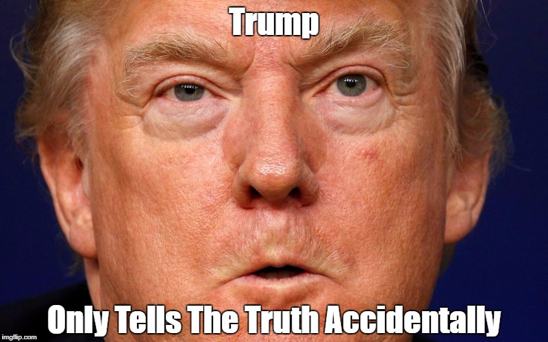 """Trump Only Tells The Truth Accidentally"" 