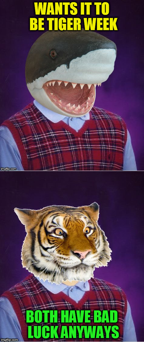 WANTS IT TO BE TIGER WEEK BOTH HAVE BAD LUCK ANYWAYS | made w/ Imgflip meme maker