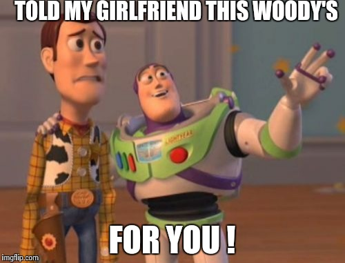 Um buzz | TOLD MY GIRLFRIEND THIS WOODY'S FOR YOU ! | image tagged in memes,x everywhere,x x everywhere,ok,funny | made w/ Imgflip meme maker
