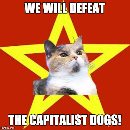 WE WILL DEFEAT THE CAPITALIST DOGS! | image tagged in lenin cat | made w/ Imgflip meme maker
