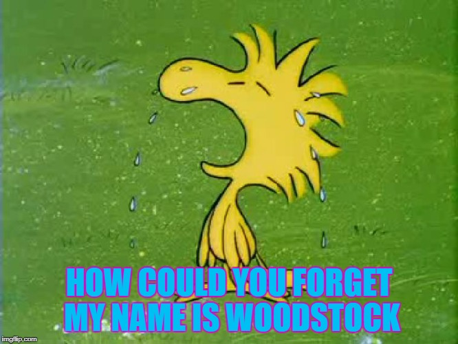 HOW COULD YOU FORGET MY NAME IS WOODSTOCK | made w/ Imgflip meme maker