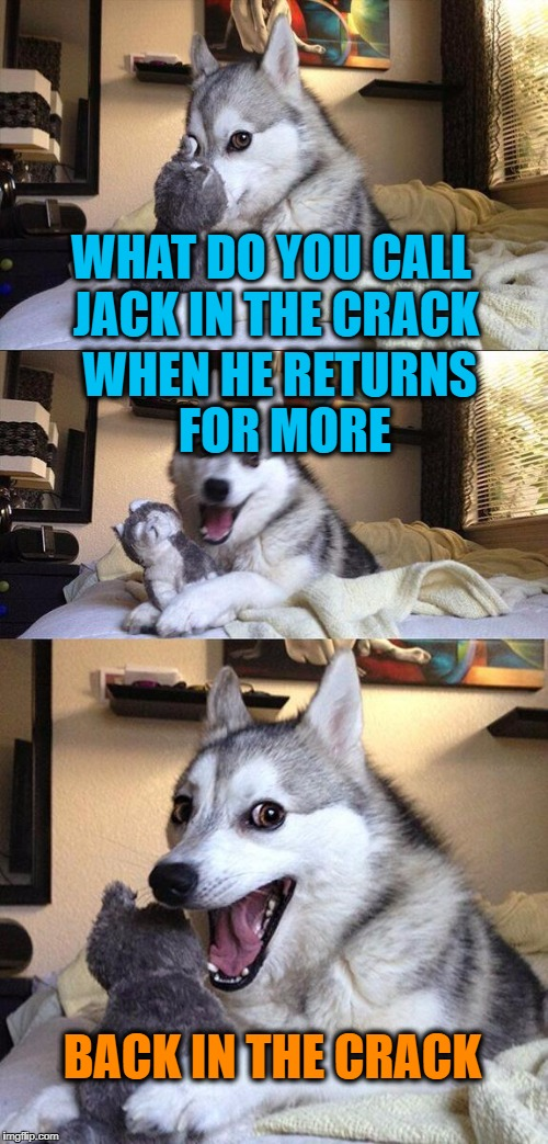 Bad Pun Dog Meme | WHAT DO YOU CALL JACK IN THE CRACK WHEN HE RETURNS FOR MORE BACK IN THE CRACK | image tagged in memes,bad pun dog | made w/ Imgflip meme maker