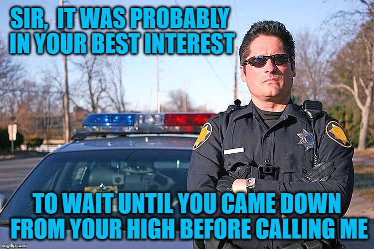 police | SIR,  IT WAS PROBABLY IN YOUR BEST INTEREST TO WAIT UNTIL YOU CAME DOWN FROM YOUR HIGH BEFORE CALLING ME | image tagged in police | made w/ Imgflip meme maker