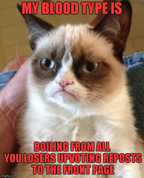 Why submit anything new? Keep the same memes we have now forever until the site dies! | MY BLOOD TYPE IS BOILING FROM ALL YOU LOSERS UPVOTING REPOSTS TO THE FRONT PAGE | image tagged in memes,grumpy cat,repost hell,repost,reposts,die | made w/ Imgflip meme maker