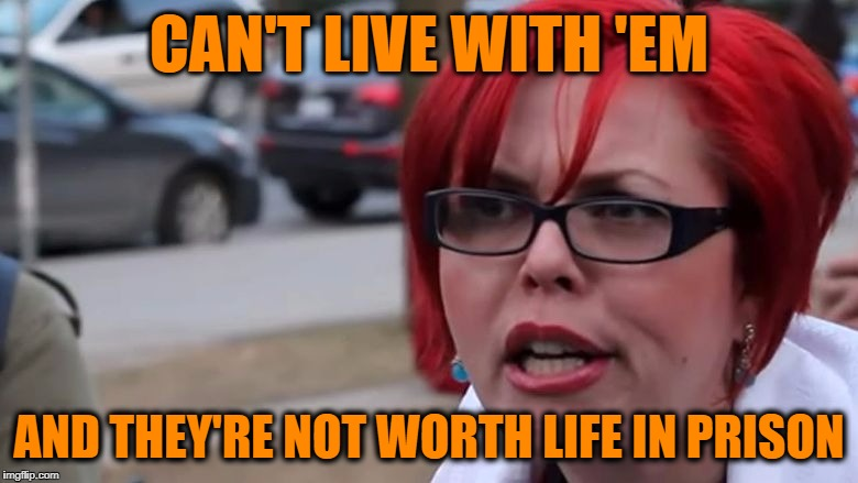 triggered | CAN'T LIVE WITH 'EM AND THEY'RE NOT WORTH LIFE IN PRISON | image tagged in triggered | made w/ Imgflip meme maker