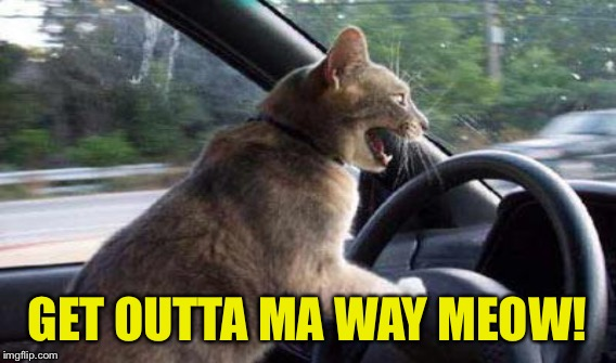 GET OUTTA MA WAY MEOW! | made w/ Imgflip meme maker