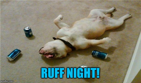 RUFF NIGHT! | made w/ Imgflip meme maker