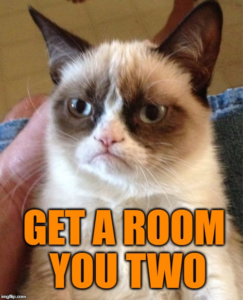 Grumpy Cat Meme | GET A ROOM YOU TWO | image tagged in memes,grumpy cat | made w/ Imgflip meme maker