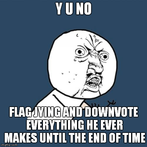 Y U No Meme | Y U NO FLAG JYING AND DOWNVOTE EVERYTHING HE EVER MAKES UNTIL THE END OF TIME | image tagged in memes,y u no | made w/ Imgflip meme maker