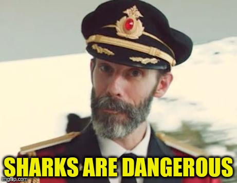 SHARKS ARE DANGEROUS | made w/ Imgflip meme maker