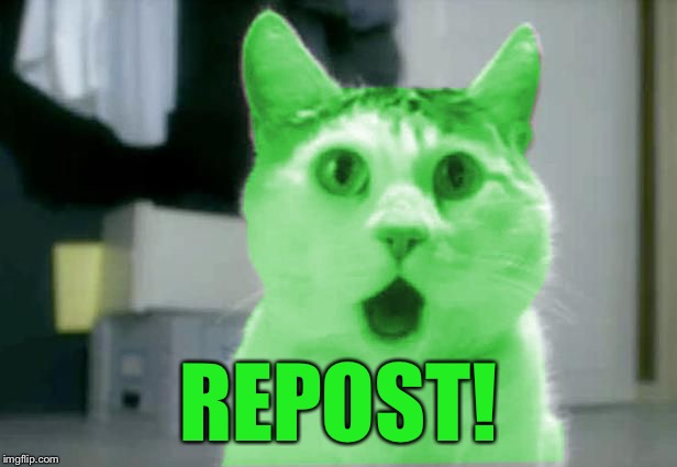 OMG RayCat | REPOST! | image tagged in omg raycat | made w/ Imgflip meme maker