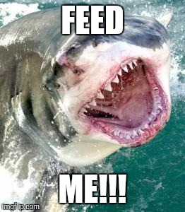 FEED ME!!! | made w/ Imgflip meme maker