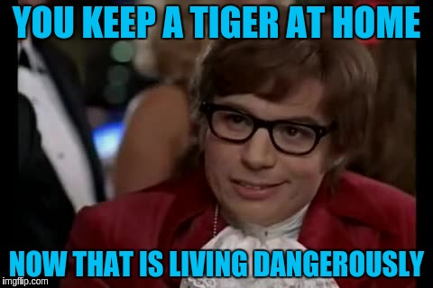 YOU KEEP A TIGER AT HOME NOW THAT IS LIVING DANGEROUSLY | made w/ Imgflip meme maker