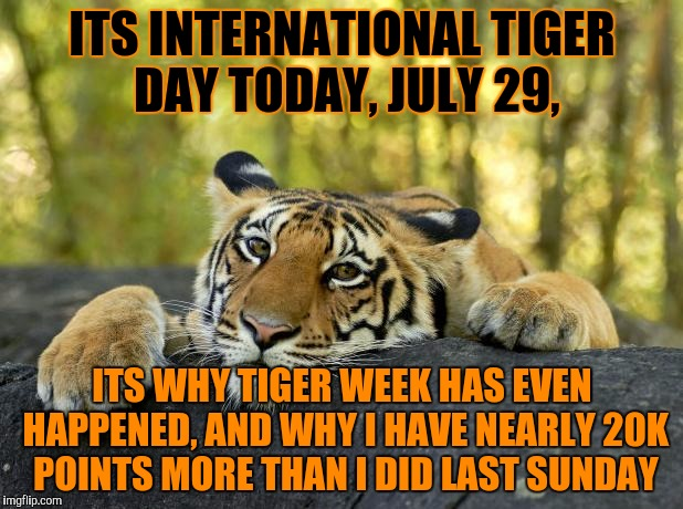 Happy tiger day!! July 29, each year. Tiger Week, a TigerLegend1046 event |  ITS INTERNATIONAL TIGER DAY TODAY, JULY 29, ITS WHY TIGER WEEK HAS EVEN HAPPENED, AND WHY I HAVE NEARLY 20K POINTS MORE THAN I DID LAST SUNDAY | image tagged in tiger day,tiger week,tigerlegend1046,tiger,july 29th,its the reason 20k of my points even exist | made w/ Imgflip meme maker