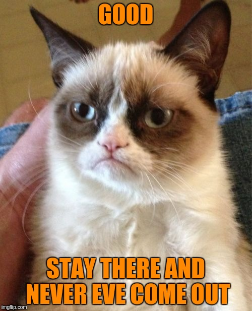 Grumpy Cat Meme | GOOD STAY THERE AND NEVER EVE COME OUT | image tagged in memes,grumpy cat | made w/ Imgflip meme maker