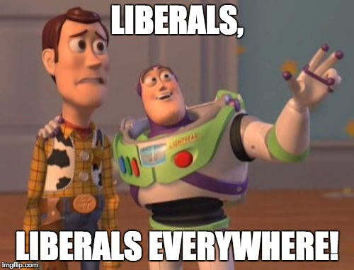 X, X Everywhere Meme | LIBERALS, LIBERALS EVERYWHERE! | image tagged in memes,x x everywhere | made w/ Imgflip meme maker