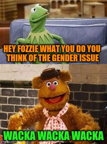 Fozzie on the gender issue | HEY FOZZIE WHAT YOU DO YOU THINK OF THE GENDER ISSUE WACKA WACKA WACKA | image tagged in memes,funny,fozzie bear,acim,lgbt,gender identity | made w/ Imgflip meme maker