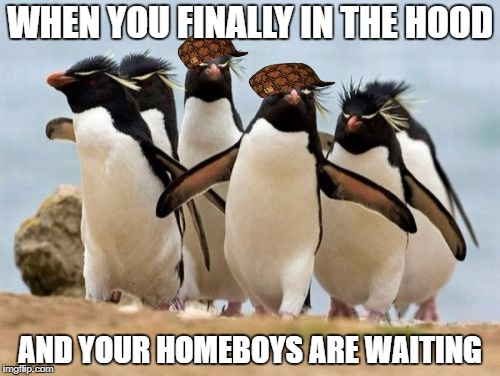 Penguin Gang | WHEN YOU FINALLY IN THE HOOD AND YOUR HOMEBOYS ARE WAITING | image tagged in memes,penguin gang,scumbag | made w/ Imgflip meme maker