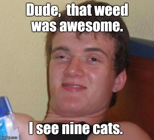 10 Guy Meme | Dude,  that weed was awesome. I see nine cats. | image tagged in memes,10 guy | made w/ Imgflip meme maker