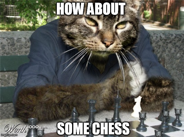 HOW ABOUT SOME CHESS | made w/ Imgflip meme maker