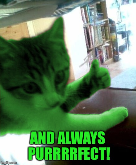 thumbs up RayCat | AND ALWAYS PURRRRFECT! | image tagged in thumbs up raycat | made w/ Imgflip meme maker