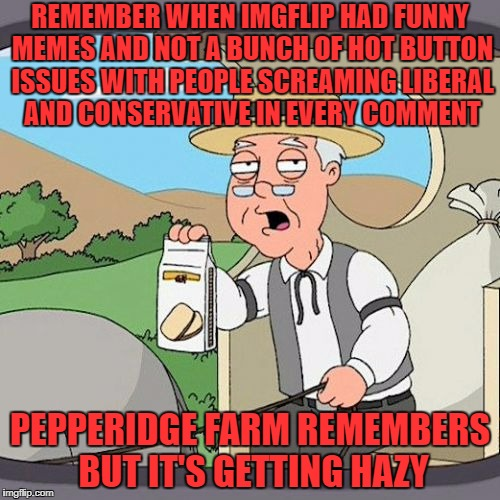 both sides of the aisle need to grow up. we are all in this boat together so stop drilling holes | REMEMBER WHEN IMGFLIP HAD FUNNY MEMES AND NOT A BUNCH OF HOT BUTTON ISSUES WITH PEOPLE SCREAMING LIBERAL AND CONSERVATIVE IN EVERY COMMENT P | image tagged in memes,pepperidge farm remembers | made w/ Imgflip meme maker