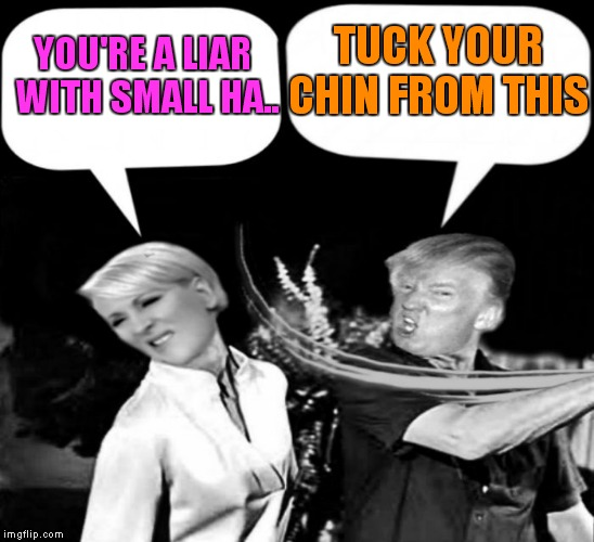 On this weeks episode of presidential reality tv! | YOU'RE A LIAR WITH SMALL HA.. TUCK YOUR CHIN FROM THIS | image tagged in trump slap mika,donald trump,mika brzezinski,cnn fake news | made w/ Imgflip meme maker