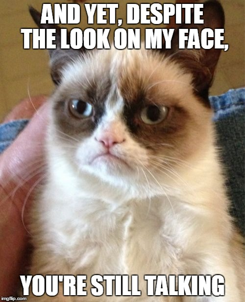 Grumpy Cat Wants You to Have Some Quiet Time (ㆆ_ㆆ) |  AND YET, DESPITE THE LOOK ON MY FACE, YOU'RE STILL TALKING | image tagged in memes,grumpy cat,grumpy cat insults,quiet,silence,shush | made w/ Imgflip meme maker
