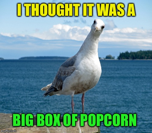 I THOUGHT IT WAS A BIG BOX OF POPCORN | made w/ Imgflip meme maker