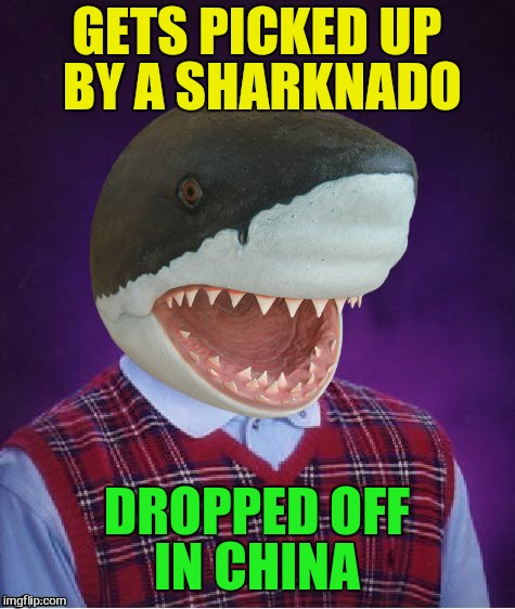 Bad Luck Shark | GETS PICKED UP BY A SHARKNADO DROPPED OFF IN CHINA | image tagged in bad luck shark | made w/ Imgflip meme maker