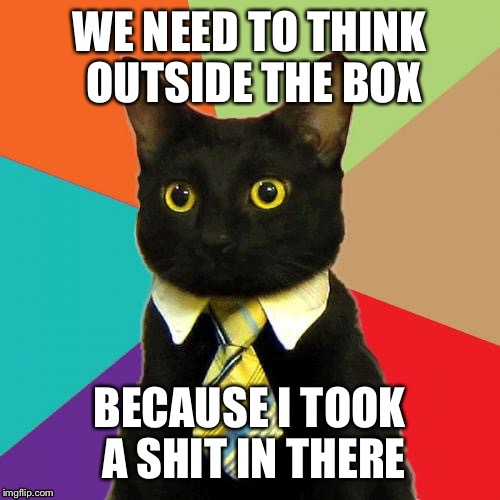 Business Cat | WE NEED TO THINK OUTSIDE THE BOX BECAUSE I TOOK A SHIT IN THERE | image tagged in memes,business cat | made w/ Imgflip meme maker
