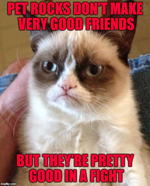 My friends and I had some pretty epic rock battles back in the day... | PET ROCKS DON'T MAKE VERY GOOD FRIENDS BUT THEY'RE PRETTY GOOD IN A FIGHT | image tagged in memes,grumpy cat,pet rocks,rock fights,funny,cats | made w/ Imgflip meme maker