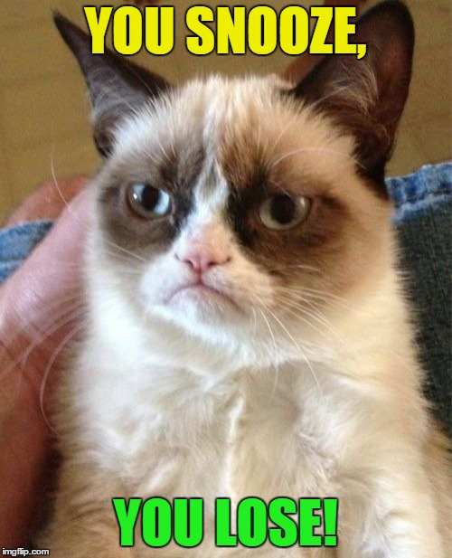 Grumpy Cat Meme | YOU SNOOZE, YOU LOSE! | image tagged in memes,grumpy cat | made w/ Imgflip meme maker