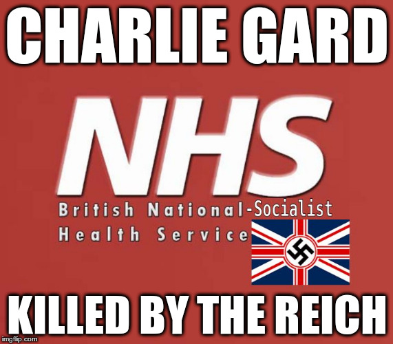 National-Socialist Britian | CHARLIE GARD KILLED BY THE REICH | image tagged in nh-ss,nhs,british fascism,4th reich,fascist british judges | made w/ Imgflip meme maker