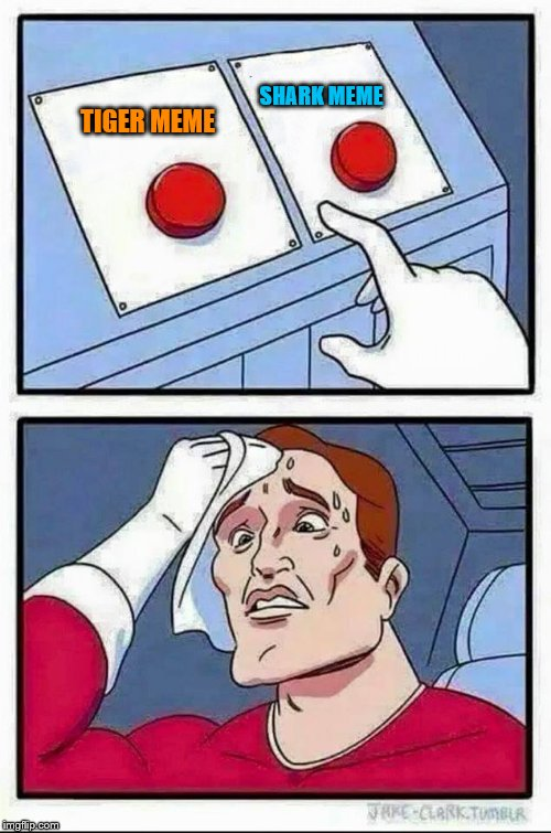 Two Buttons Meme | SHARK MEME TIGER MEME | image tagged in hard choice to make | made w/ Imgflip meme maker