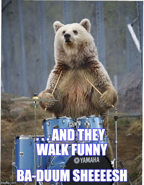 Drummer bear | . . . AND THEY WALK FUNNY | image tagged in drummer bear | made w/ Imgflip meme maker
