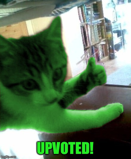 thumbs up RayCat | UPVOTED! | image tagged in thumbs up raycat | made w/ Imgflip meme maker