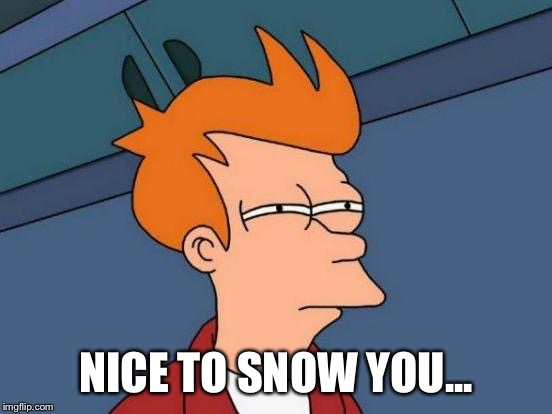 Futurama Fry Meme | NICE TO SNOW YOU... | image tagged in memes,futurama fry | made w/ Imgflip meme maker