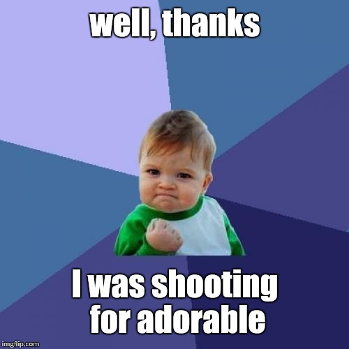 Success Kid Meme | well, thanks I was shooting for adorable | image tagged in memes,success kid | made w/ Imgflip meme maker