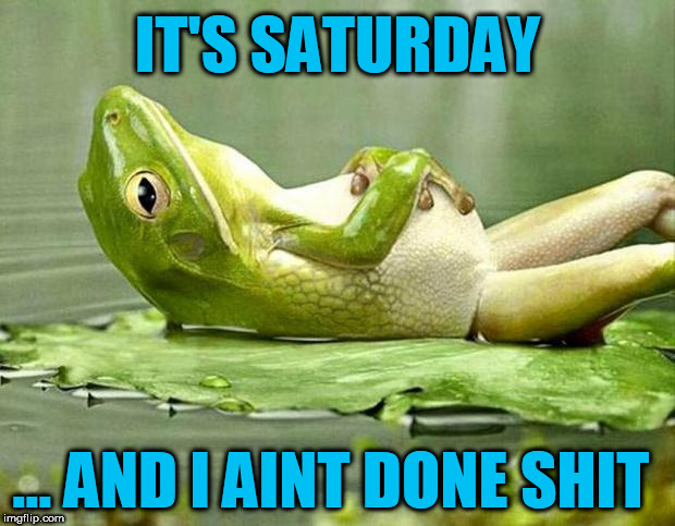 Lazy frog | IT'S SATURDAY ... AND I AINT DONE SHIT | image tagged in lazy frog,saturday,lazy,work,lazy town,no work | made w/ Imgflip meme maker