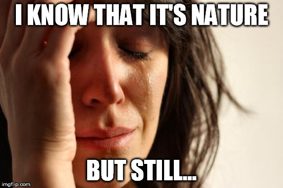 First World Problems Meme | I KNOW THAT IT'S NATURE BUT STILL... | image tagged in memes,first world problems | made w/ Imgflip meme maker